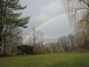 Rainbow - over my garden.